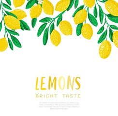 Abstract illustration of lemon.