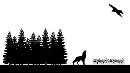 Heulener Wolf am Waldrand und Adler - Howling wolf at the edge of the forest and eagle