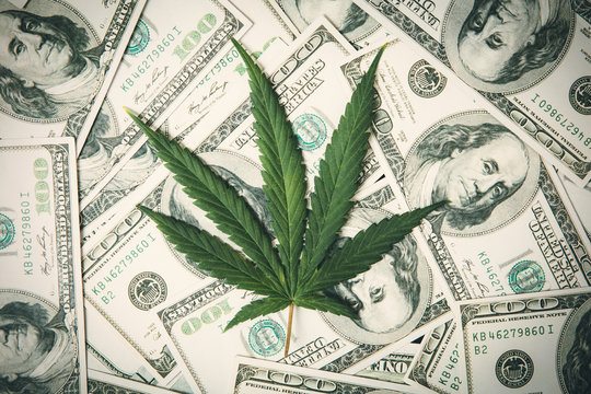 Marijuana Leaf and US Dollar Banknotes. Marijuana business concept. CBD Medical Marijuana Dollar THC Cannabis.