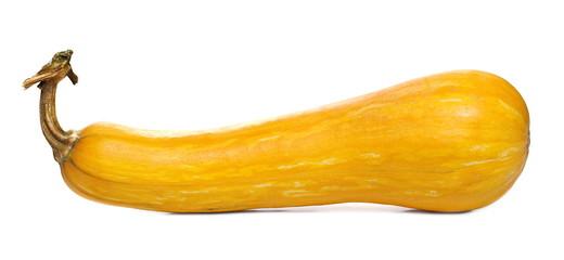 Yellow autumn gourd isolated on white background