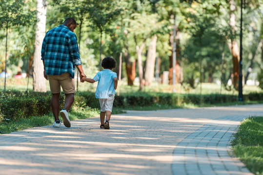 back view of curly kid holding hands with african american father and walking in park