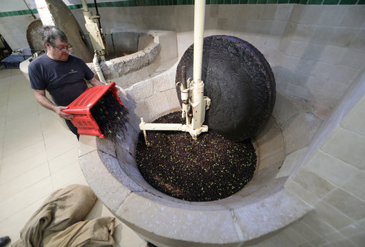 """Robert Luminet, miller for """"Nicolas Alziari"""" pours olives into a grinding machine before they are pressed to be made into oil, in Nice"""