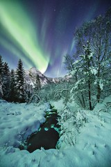 Vertical shot of a beautiful snow covered forest and mountains under the amazing northern lights