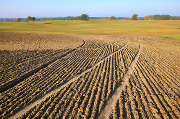In de dag Cultuur View of a plowed field in warm morning sun