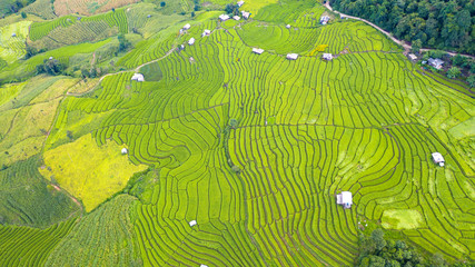 Autocollant pour porte Les champs de riz Aerial view of the green terraced rice fields landscape different pattern at morning in the northern thailand