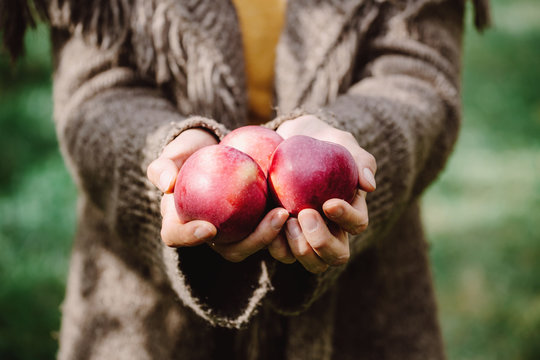 Close-up of a woman holding apples