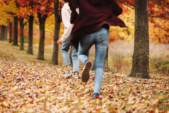 Teenage girls playing with leaves outdoor, autumn season
