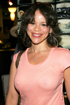 Rosie Perez at arrivals for Palm Pictures CRONICAS Premiere