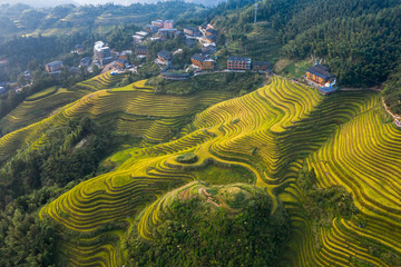 Wall Murals Guilin Longji Rice terraces China aerial View