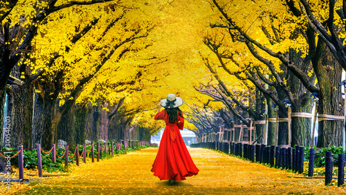 Wall mural Beautiful girl walking at row of yellow ginkgo tree in autumn. Autumn park in Tokyo, Japan.