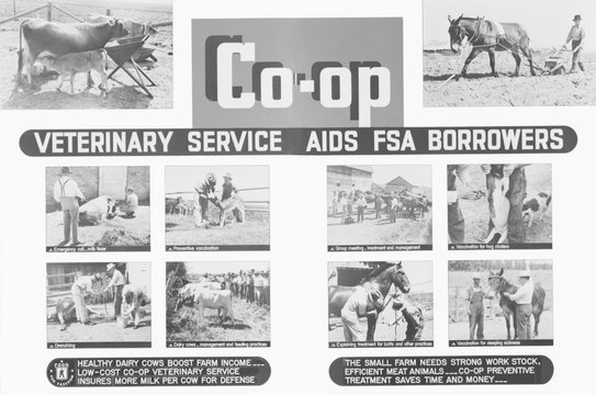 Farm Security Administration poster promoting rural cooperatives veterinary services