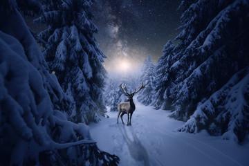Ein Hirsch in einer kalten Winternacht im Wald. Sternenhimmel mit Mond und Milchstraße
