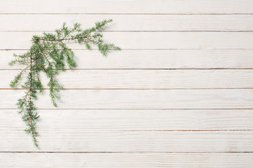 juniper branches on a white wooden background. Christmas and New