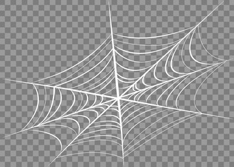 Spider web isolated on transparent background.