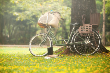 vintage bicycle in the park under the tree on the ground with grass and yellow flowers and notebooks.