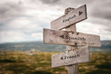 English, spanish and french signpost outdoors in nature. Learn, teach, languages, education, international concept.