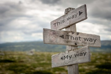 This way, that way, my way signpost. Guidance concept.