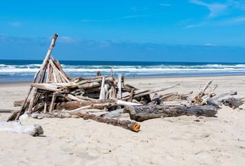 Driftwood on the beach at the Oregon coast