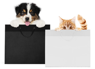 Fotomurales - puppy dog and cat pets together showing  black and silver shopping bags isolated on white background blank template and copy space, black friday and cyber monday concept