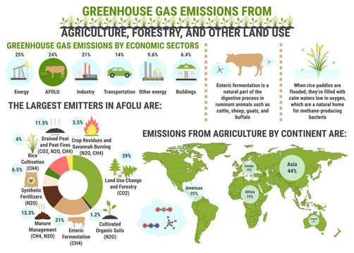 Infographic of global greenhouse gas emissions by agriculture, forestry and other land use sector