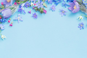 Fotobehang Bloemen spring flowers on blue background