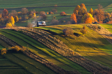 Canvas Prints Honey Fall in Slovakia. Meadows and fields landscape near Strelniky. Autumn colored trees at sunrise