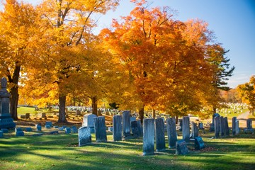 Wall Murals Cemetery Beautiful shot of a cemetery with gorgeous trees in autumn on a sunny day