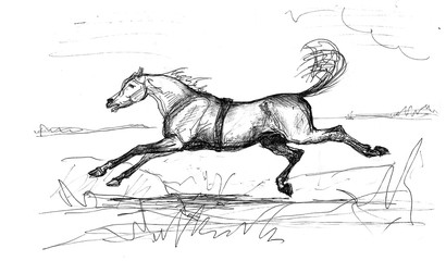 Graphic drawing ballpoint pen, a horse galloping across a field