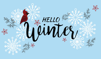Hello Winter vector illustration background with snowflakes and Christmas branches.
