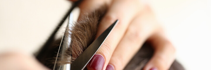 Female Hands Cutting Brown Hair with Scissors
