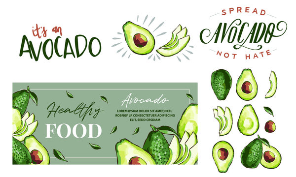 Hand drawn watercolor painting on white background. Vector illustration of avocado fruits sketch elements, eco healthy ingredients vector illustration. Great for poster, banner, voucher, coupon.