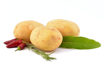 Raw potato isolated on white, with  herbs and spice.