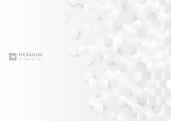 Abstract paper style hexagon pattern on white Background with light and shadow. Wall mural