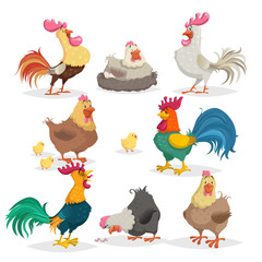 Cute cartoon chickens set. Roosters and hens in different poses. Little chicks. Farm birds and animals collection. Vector illustrations in comic style.