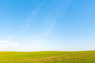 Fotobehang Weide, Moeras beautiful blue sky yellow autumn field, amazing landscape