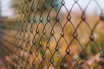 Golden hour fence pattern