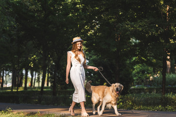 Wall Mural - full length view of beautiful girl in white dress and straw hat walking with golden retriever and looking away