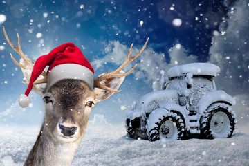 Poster Ree Rentier mit Nikolausmütze vor einem zugeschneiten Traktor