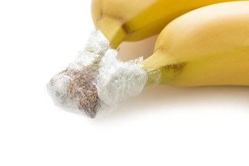 Best tips to keep bananas from turning brown and ripening wrapping with transparent polyethylene food film.