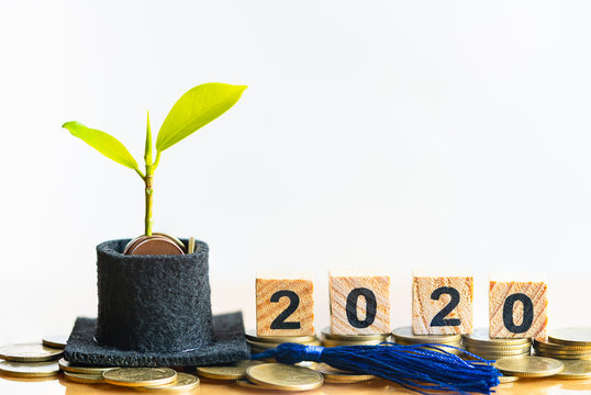 wood word block 2020 and graduation hat with small plant tree on coins money. Saving money for education or scholarship concepts. Conception of education fee, education expenses, school tuition cost.