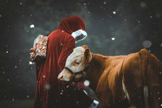 Weihnachtsmann und Ochse im Schnee