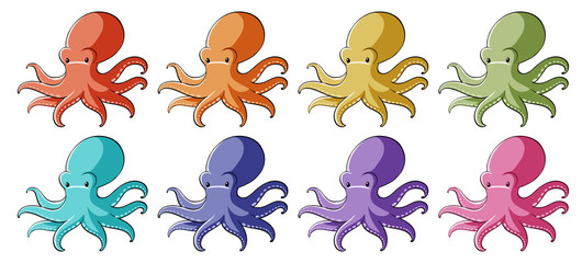 Octopus in different colors