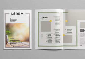 Magazine Layout with Multicolored Line Elements