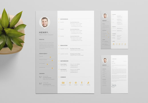 Resume Layout with Gray Sidebar Element and Orange Accents