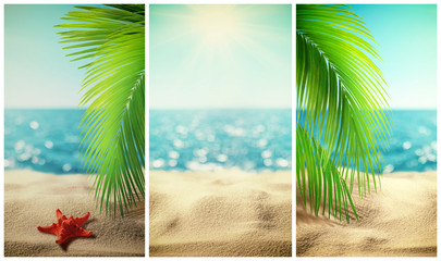 Set of beautiful tropical beach vertical banner. Summer landscape with coco palms on blur defocused blue sea or ocean background. Summer vacation concept Wall mural