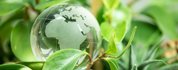 green earth concept glass sphere Fotomurales