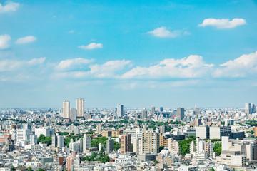 Fotomurales - 都市風景 東京