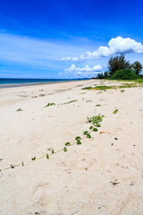 Long stretch of unspoilt beach
