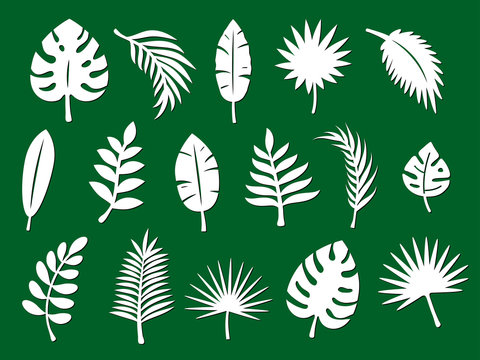 Laser cutting template of tropical leaves, jungle branches. Exotic split foliage of palm isolated on green background. Vector silhouette of elements. Set for wood carving, paper cut, stamp for die cut