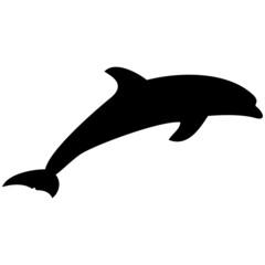 Schattenbild von einem Delphin, isoliert freigestellt vor weißem Hintergrund